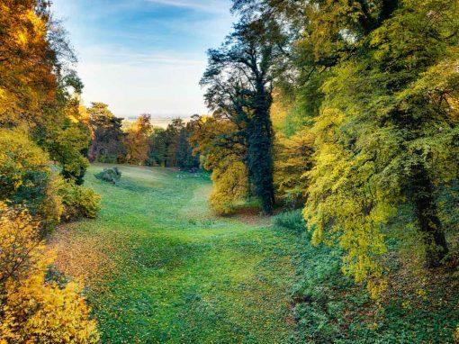 Landscape – park of Chateau Loucen